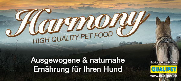 banner website harmony